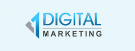 Digital Marketing 6 Months Industrial Training