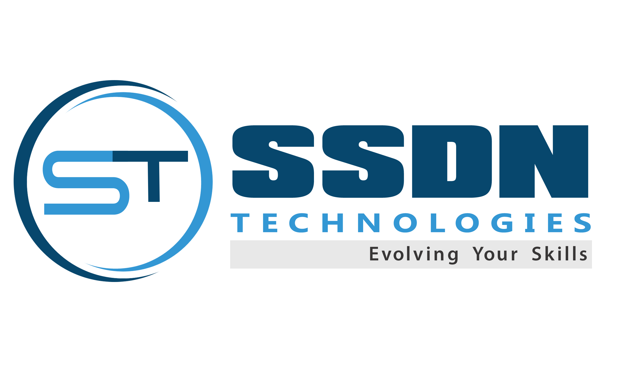 SSDN Logo