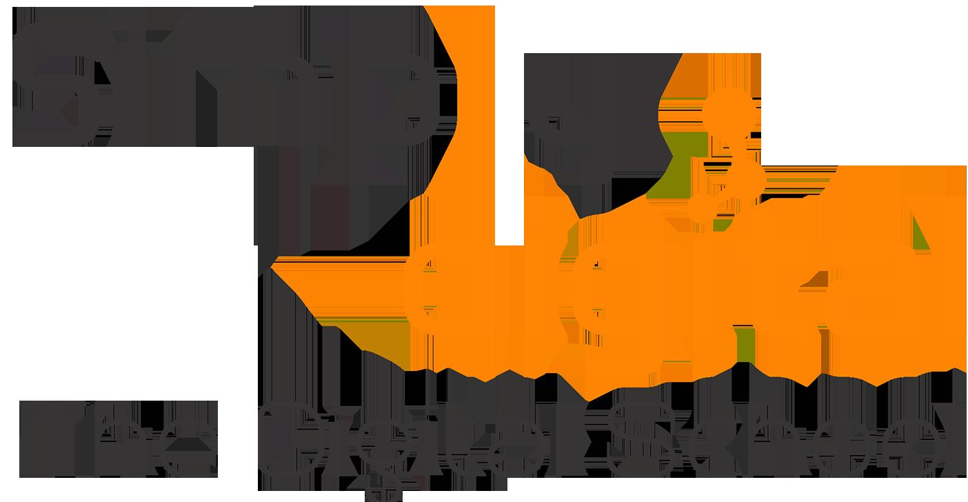 internet marketing institutes in delhi - simple digital