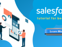 Salesforce Tutorial For Beginners: Learn step by step