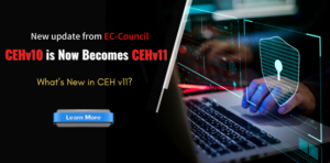 about cehv11