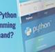 why python in demand